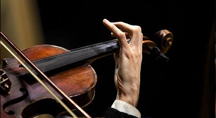 弦楽器部門の写真